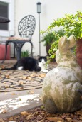 My kitty, Kit Kat, staring down the garden bunny in my patio makeover. | The Happy Home Therapist